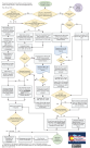 Minor-Name-Change-Flowchart-2
